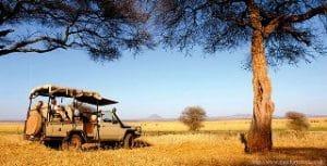 เที่ยวโซนแอฟริกา